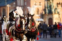 【専用車】ポーランドの魅力 大人気の3都市巡り7日間