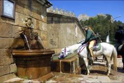 6月~8月(夏季限定)【イタリア】シチリア島 地中海に浮かぶシチリア島の山をホーストレッキング!!(中級者~上級者、騎乗日数6日間)
