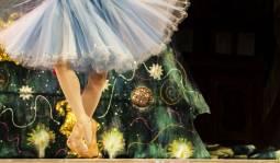 【2018年12月】 マリインスキーバレエ♪『白鳥の湖』鑑賞★ドイツで過ごすクリスマス🌠5日間
