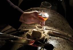 レミー・マルタンの蒸留所でヴィンテージコニャックの試飲体験 (6時間)