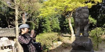 Les plus beaux clichés du Japon