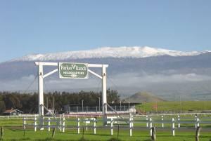 パーカー牧場