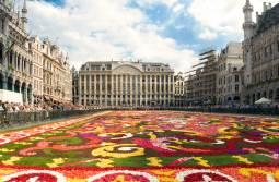 2018年8月 2年に1度の花の祭典♪ブリュッセル・フラワーカーペット