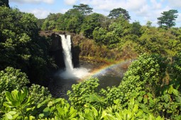 ハワイ島特選ツアー チャーター (貸切観光 南回り)