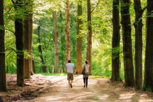 森に佇むクレラー・ミュラー美術館