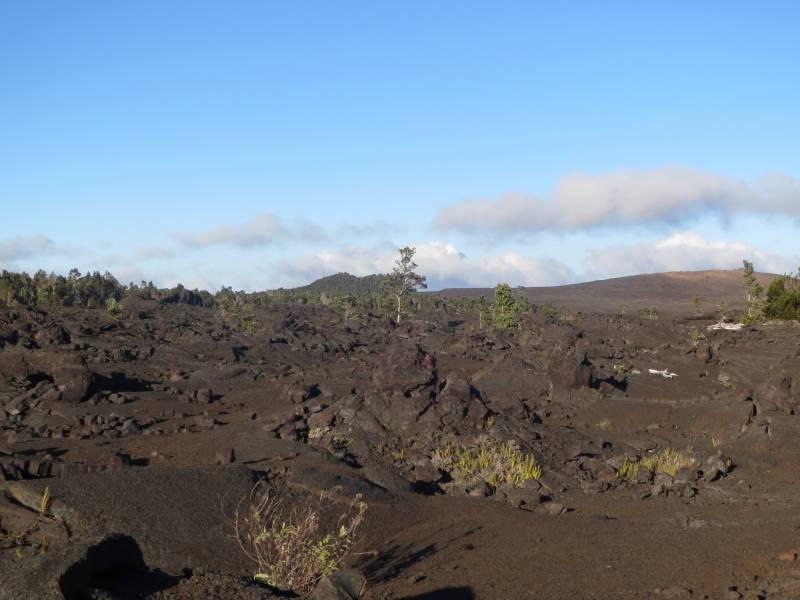 ハワイ島キラウエア火山国立公園☆チェーン・オブ・クレーターズロードの溶岩台地☆