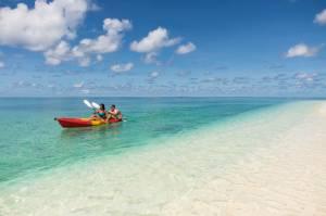 バード島・デニス島が特集されました