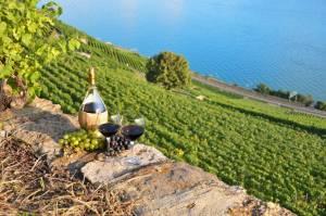 スイスワインと世界遺産の街を訪れる旅