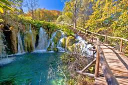 秋の絶景と味覚の旅 スロベニアとクロアチア8日間【リヴァデのトリュフ祭り】