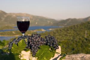 注目のクロアチアワイン