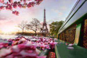 パリでおすすめ☆彡 ロマンチックなハネムーンを演出するオプショナルツアー①