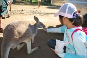 小学生から参加出来るオーストラリアイングリッシュキャンプ【11/13(月)締切】