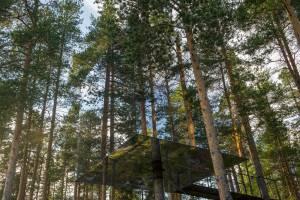 スウェーデンの森に浮かぶ巨大な箱?モダンなツリーホテル