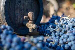 エゲルのワイン【ハンガリー情報】