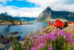 北欧への旅 雄大な自然とかわいいらしい街並