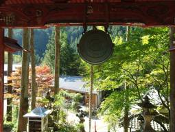 Immersion totale dans un temple bouddhiste (Shukubo)