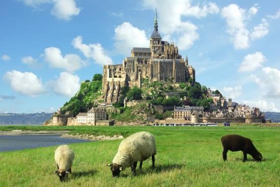 モンサンミッシェルと羊