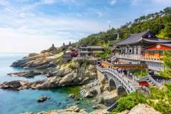 2020世界卓球選手権 釜山大会観戦ツアー