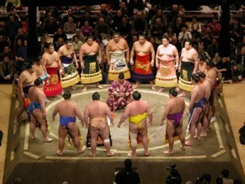 Culture japonaise: les tournois de Sumo