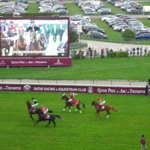 【スタッフ報告】2013年凱旋門賞5―競馬の殿堂レース