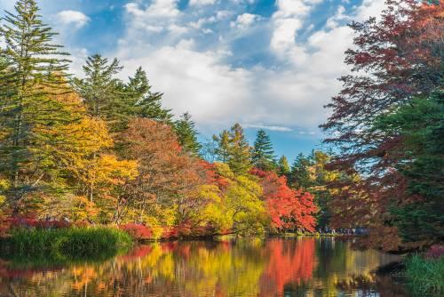 Dans la nature grandiose de Karuizawa.